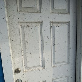 Outside door. After the cleaning left. I was told they spend 45 min. just cleaning the doors.