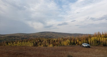 Soapstone Basin Dispersed Camping