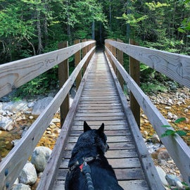 This bridge is at the start of the hike- beautiful views on either side