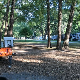 No privacy for tent sites (you can see about six campsites in the background in this pic)