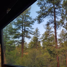 View out the trailer window from our campsite