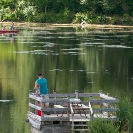 Everybody enjoying some fishing