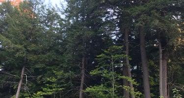 Saranac Lake Islands Adirondack Preserve