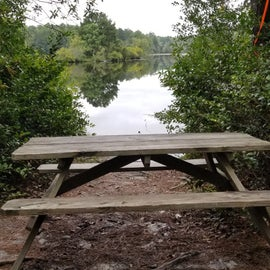 A little bench to sit and reflect