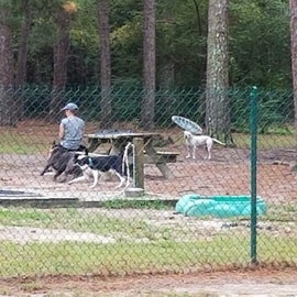 Nice dog park