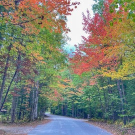 Campground road