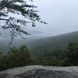 The view from Martha's Pretty Point. It was a rainy day.