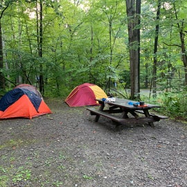 Campsite with 3 tents and plenty of space