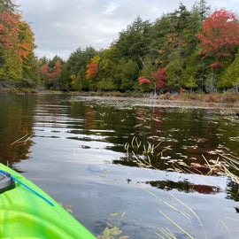 Foliage and kayaking on Fishcreek.