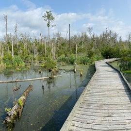 Boardwalk Trail behind the visitor center