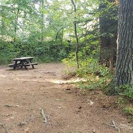 Meadowbrook Site 57