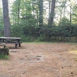 Meadowbrook Site 56