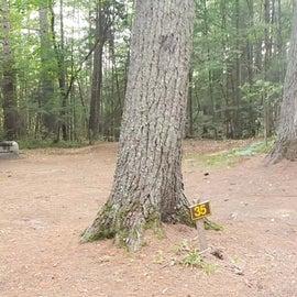 Meadowbrook Site 35