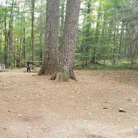 Meadowbrook Site 36