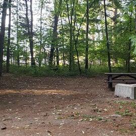 Meadowbrook Site 49