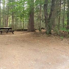 Meadowbrook Site 37