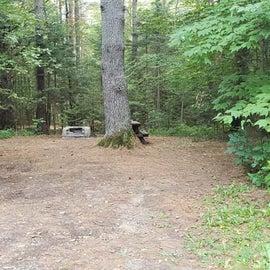 Meadowbrook Site 29