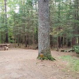 Meadowbrook Site 22