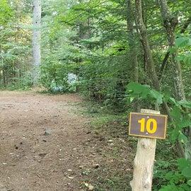 Site 10 Meadowbrook