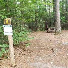Meadowbrook Site 5