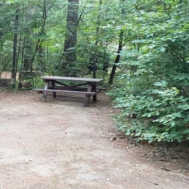 Meadowbrook Site 8