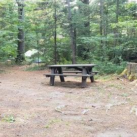 Meadowbrook Site 17