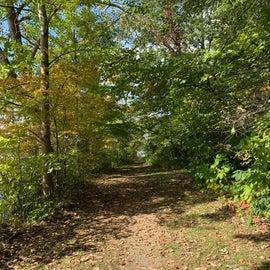 Small hiking trail