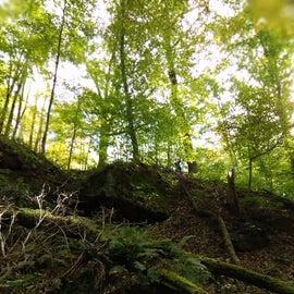 Off trail hike!!