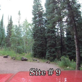 Site #9 feels secluded with all the trees.