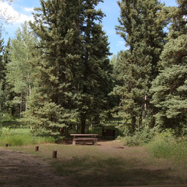 Site #7 East Marvine Campground.  Horse Corrals just to the left are an extra $5/night