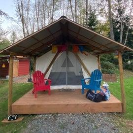 Main canvas tent