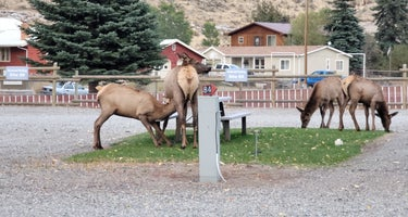 Rocky Mountain RV Park & Lodging