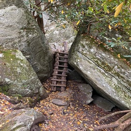 Boone Fork Trail