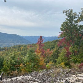 View from Raven's Rock trail