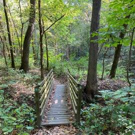 Great walking trails