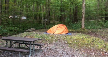Cosby Campground - Great Smoky Mountains National Park