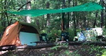Ash Grove Mountain Cabins & Camping