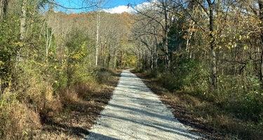 Mitchell Creek Road Dispersed