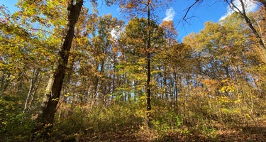 Wildcat Hollow Hiking Trail Dispersed