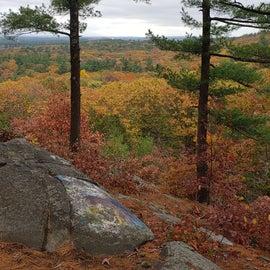Cedar Hill view in autumn