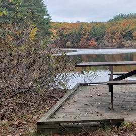 Picnic spot along Chickering Pond