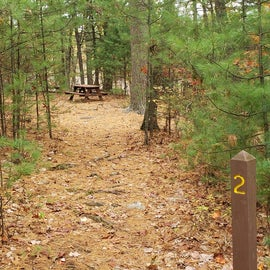 Entrance to Site 2 Rocky Woods. Each site has a short entry trail