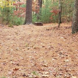Site 2 Rocky Woods