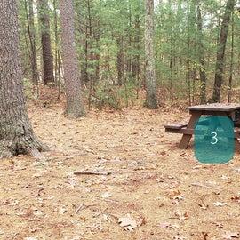 Site 3 Rocky Woods