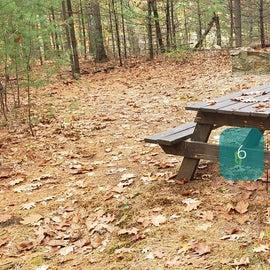 Site 6 Rocky Woods