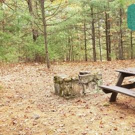 Site 5 Rocky Woods