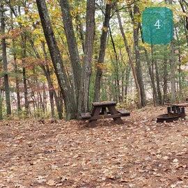 Site 4 Rocky Woods