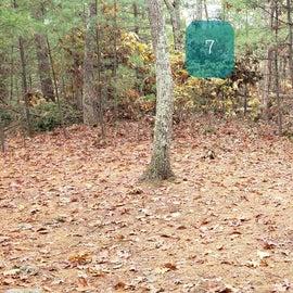 Site 7 Rocky Woods