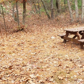 Site 8 Rocky Woods