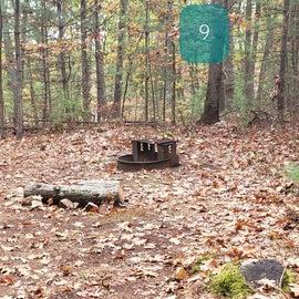 Site 9 Rocky Woods